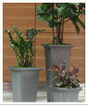 Indoor Office Plants from Plantasia Interiors