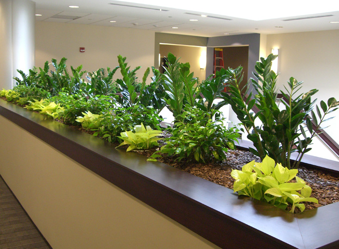 Plantasia Portfolio -Interior Exterior Holiday Floral Arrangements